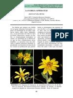 La_familia_Asteraceae.pdf
