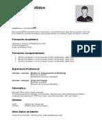 curriculum-vitae-cronologico