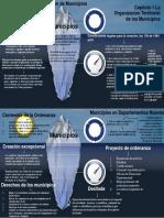 Capítulo 1 La Organización Territorial de los Municipios.pdf