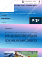 Caracteristicas fisicas y mecanicas del concreto.pdf