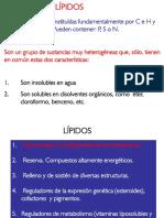 mcdaza_lipidos