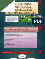 INSTRUMENTOS ORIENTADOS A CONSERVAR LOS RECURSOS NATURALES