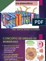 MEMBRANA PLASMATICA 2020-I MRA -S6