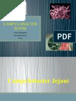 Campylobacter Jejuni Cossio Roimber Acevedo Kevin Curso 1101 Alimentos Diapositiva