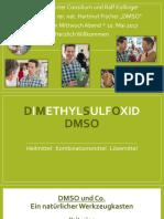 Vortrag-DMSO-Frankfurter-Consilium-10.-Mai-2017-Dimethylsulfoxid-Dr.-rer.-nat.-Hartmut-Fischer-und-Ralf-Kollinger