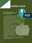 O NOVO CAPITAL SOCIAL