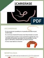 ascaridase-slides-171113151744