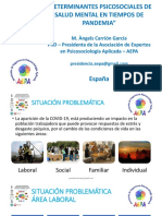 2 ESP CARRION Marian Determinantes Psicosociales Salud Mental