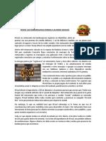CASO PRACTICO HTPF 01-08-20