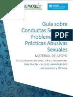 GUIA COMPLETA CSP Y PAS v 3.0.pdf