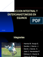 obstruccion intestinal y enteroanastomosis