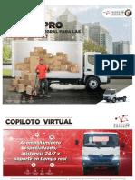 Dutro-Pro.pdf