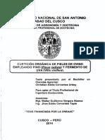 LEC 8. CURTICION ORGANICA DE PIELES DE OVINO.pdf