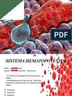 SISTEMA-HEMATOPOYETICO (1)