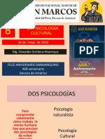 8. LA PSICOLOGIA CULTURAL