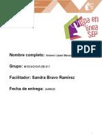 LópezManzo_Antonio_M10S4PI.docx