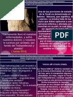248elmesiasleproso-200415184627.pdf