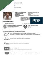 Andres Castillo CV