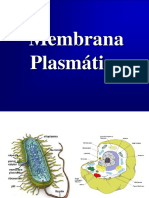 594530375.5-membrana.pdf