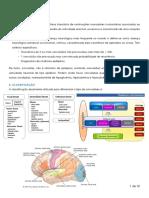 Neuro-Epilepsia