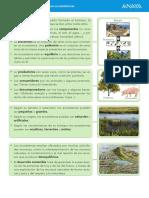 Resumen de la unidad 2. Los ecosistemas