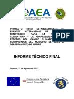NI 6.67 Informe final.pdf