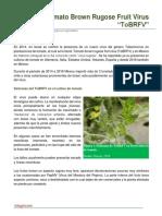 121. Tomato brown rugose fruit virus (ToBRFV)