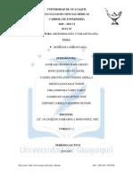 guiabrrrr.pdf