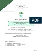 Attribution de Performance Et de Risque en Gestion de Portefeuille, 2009