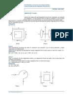 Prob#8 P CE Densidad de Campo y Flujo Magnético (1)