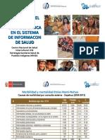 Avances en el registro variable etnica en el sistema de información de salud.pdf