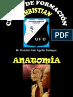 A10_COLUMNA VERTEBRAL.pdf