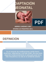 adaptacion-neonatal