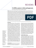 The BAFFAPRIL system in SLE pathogenesis.pdf