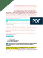 NECEDAD VS SABIDURIA.docx