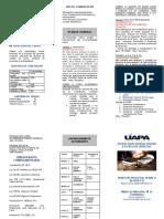 PLAN DE TRABAJO  DPP II-2020-1-2