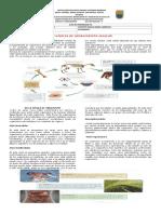 GUÍA 4 CIENCIAS NATURALES 6 (1).pdf