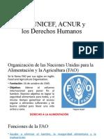 FAO,UNICEF, ACNUR y los Derechos Humanos
