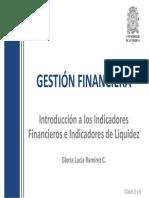 5y6-Intro Indicadores y Liquidez_e