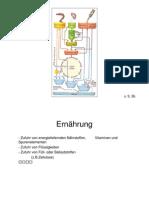 Physiologie_Homework Part2_German