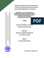 PROPUESTA DE UN PROGRAMA DE REINSERCIÓN SOCIA PARA EX INTERNOS DE UN CENTRO PENITENCIARIO CON EL PROPÓSITO DE PREVENIR LA REINCIDENCIA DELICTIVA.pdf