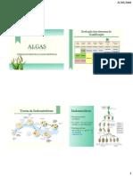 379818807-Algas-Posicao-Sistematica-1.pdf
