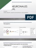 REDES NEURONALES perceptron algoritmo_adicionalv1