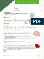 sistema oseo octavos.pdf