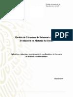 Modelo_de_TdR_Evaluacion_de_Diseno_SHCP.docx