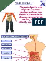 aparato-digestivo-40789-17450 (Recuperado)