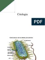 clase 2  Generalidades de Anatomía2011