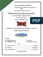 Audit fiscal d'une entreprise de production - Copie
