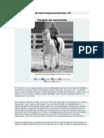 Mechanoresponsiveness 33.pdf