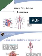 SISTEMA CIRCULATORIO SANGUÍNEO